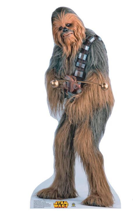 Chewy Stand Up
